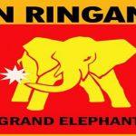 Jual Bata Ringan Malang Jual Panel Lantai Murah Grand Elephant Terpasang di Malang
